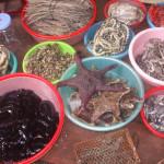 Những sản vật trên đảo Cát Bà