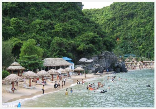 Bãi tắm cát cò ở đảo Cát Bà