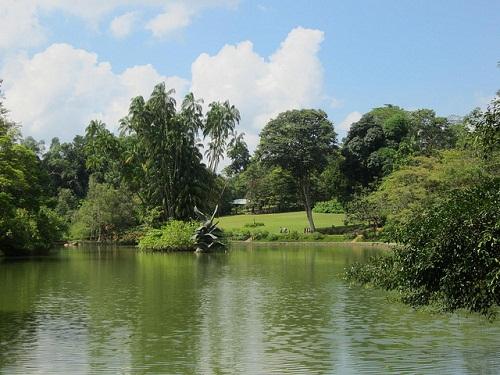 Công viên xanh Singapore