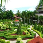 Thăm Nong Nooch khi đi du lịch Thái Lan