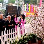 Du lịch Hạ Long 2015 tham gia lễ hội hoa Anh đào