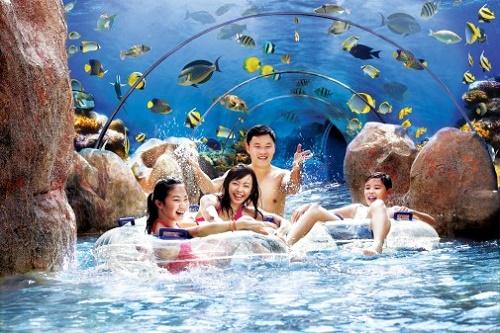 Khu vui chơi giải trí Adventure Cove Waterpark ở Singapore