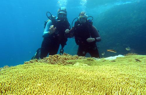 Khám phá khu bảo tồn biển Hòn Mun