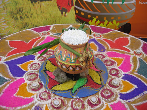 Lễ hội Ngày thứ 2 của lễ hội Pongal