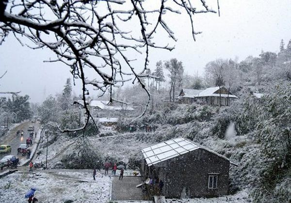 Tuyết phủ trắng Sapa