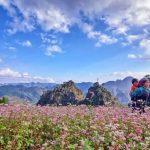 Những kinh nghiệm đi du lịch Hà Giang cần quan tâm
