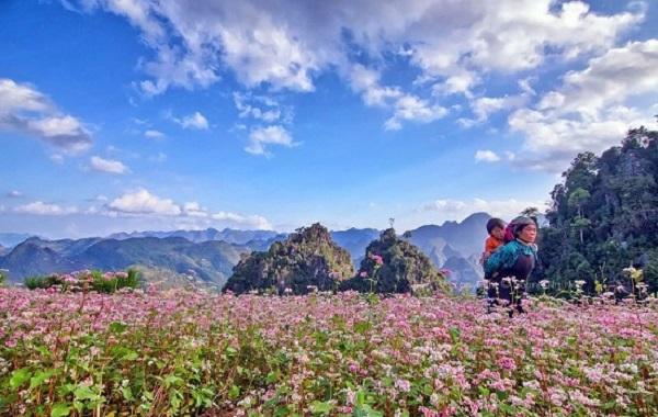 Kinh nghiệm đi du lịch Hà Giang