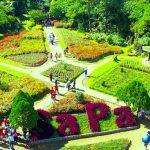 Các địa điểm du lịch nổi tiếng không thể bỏ lỡ khi đến Sa Pa