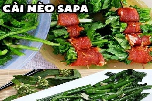 Rau cải mèo đặc sản Sapa
